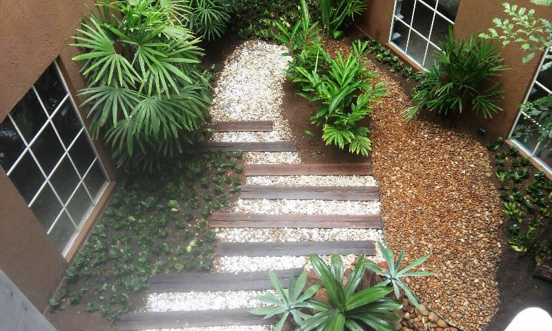 Jardim da Faculdade PIO XII é revitalizado
